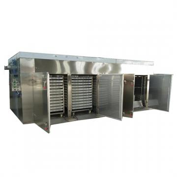 Fruit and Vegetable Drying Machine/ Lemon/ Mango Dehydrator