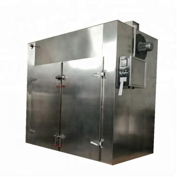 Nhg-9123A Blast Hot Air Drying Oven with Ce Proved