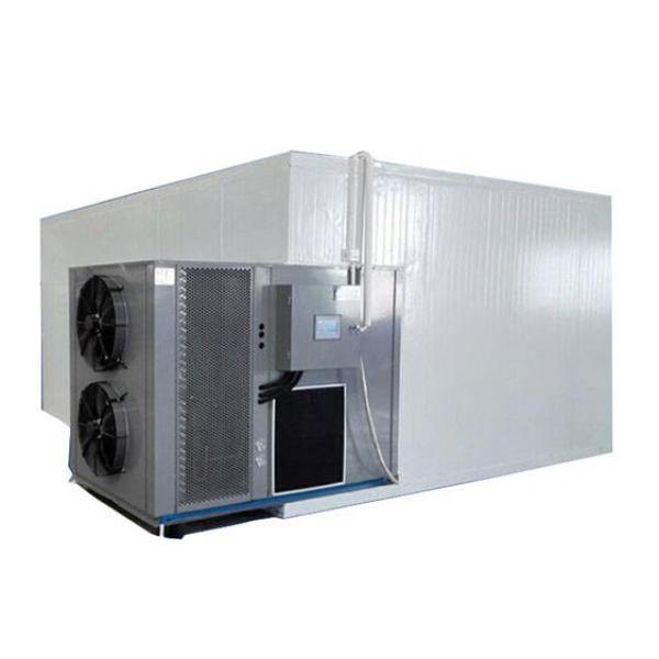 Mushroom Fruit & Vegetables Food Processing Dehydration Drying Mesh Belt Dryer/Dehydrator