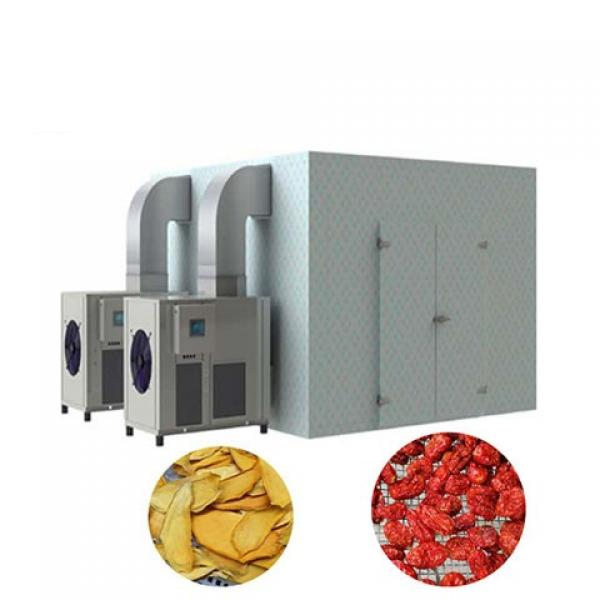 Food Machinery Fruit Vegetable Automatic Dehydrator