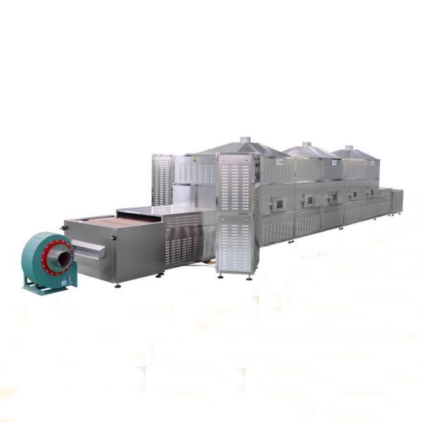 Drying Machine Chili Dryer Peper Drying Machinery Full Automatic Microwave Vacuum Baking Food Oven Machine