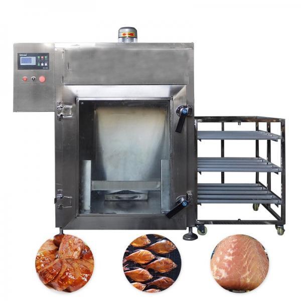 Advanced Design Catfish Tuna Fish and Chicken Smokehouse Machine