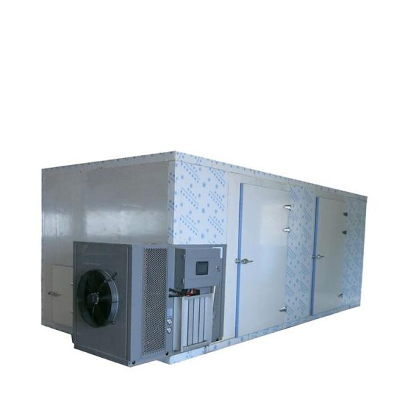 Heat Pump Drying Dehydrator Machine for Food