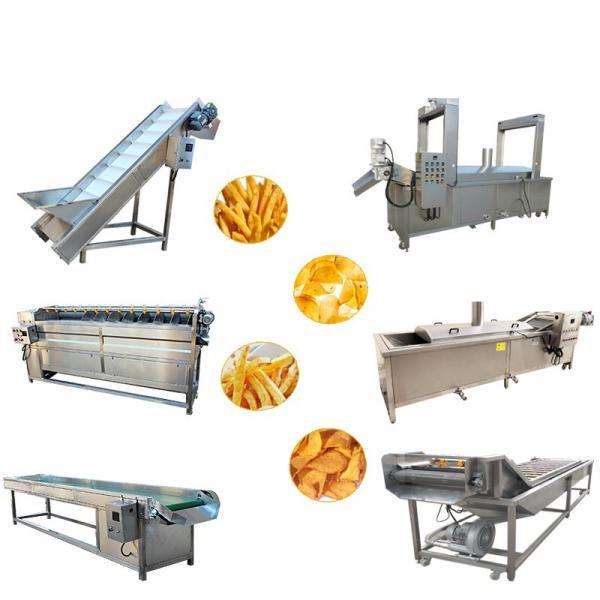 Gas Fryer Machine for French Fries Potato Chip Chicken Deep Fryer