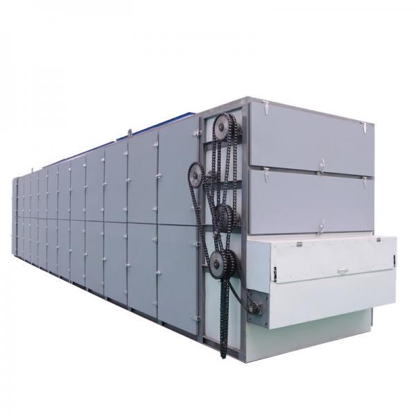 Turmeric / Curcuma Longa Multiple Layer Continuous Type Mesh Belt Dryer
