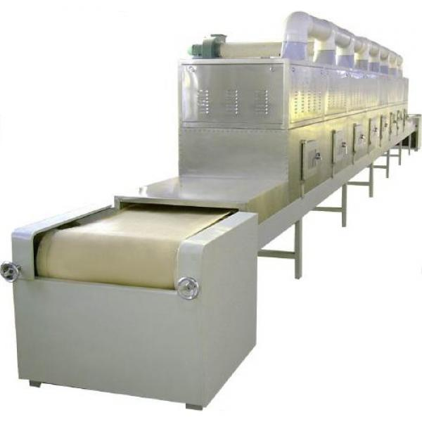 Continuous Mesh Belt Dryer for Vegetable &Fruits